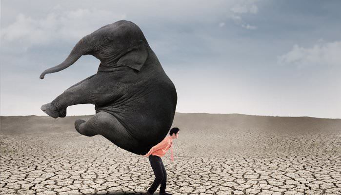 leadership-mindfulness Executive Coaching - Test