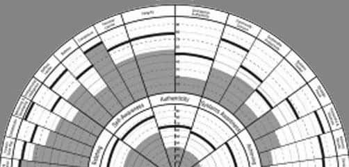 theleadershipcircle Leadership Toolkit